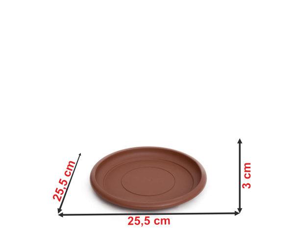 Informação dimensional do prato do vaso terracota PT33