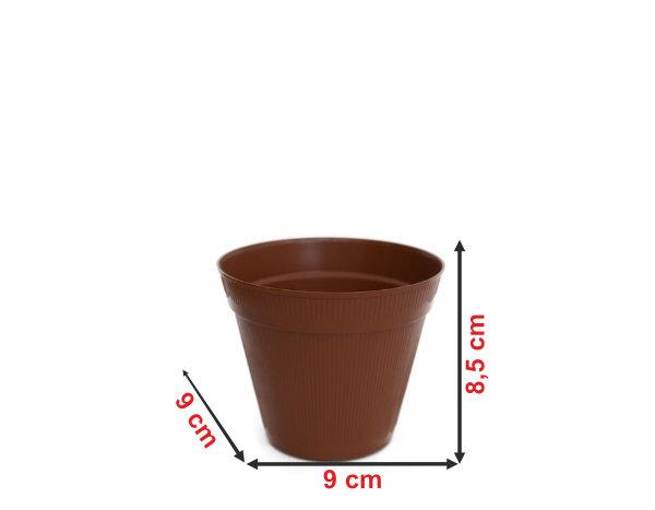 Informação dimensional do vaso V2